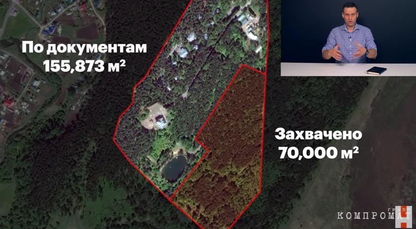 70 тыс. квадратных метров леса незаконно захватили для резиденции Тулеева