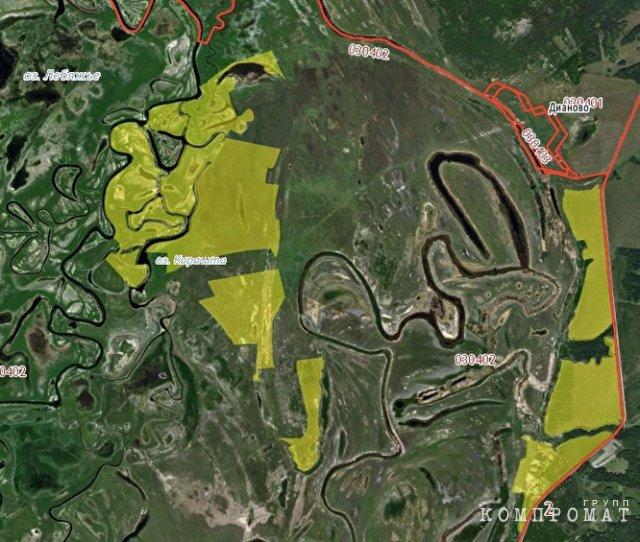 Один из земельных участков «Мясной компании» около Дианово