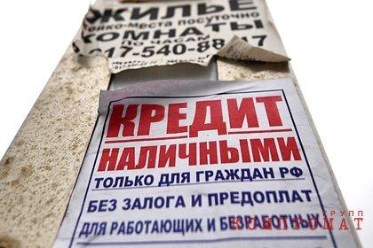 В Госдуме оценили идею амнистии кредитов россиян
