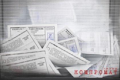 Правозащитник объяснил вред от Умного голосования для России