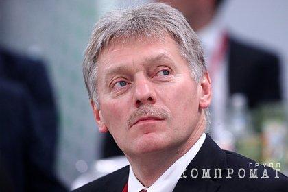 Песков допустил провокации во время праймериз Единой России