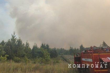 Лесной пожар в российском городе связали с поджогом
