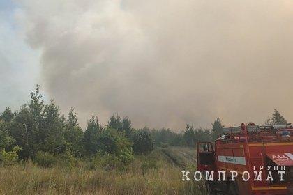 В российском городе ввели режим ЧС из-за природного пожара