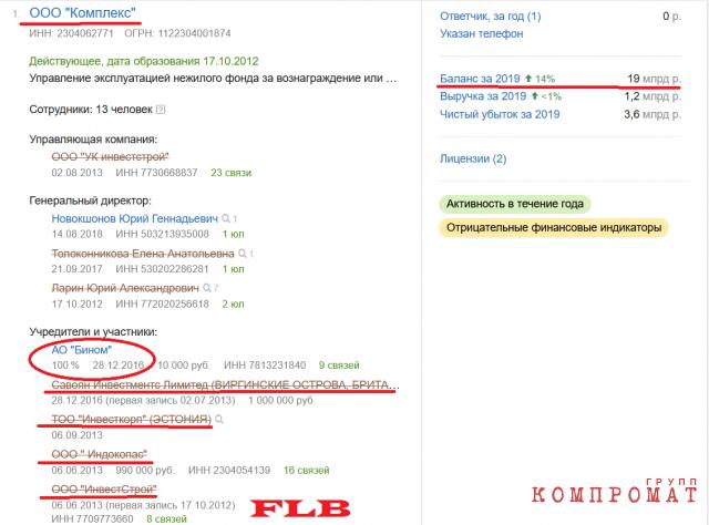 Бухгалтерский баланс ООО «Комплекс», единственным учредителем которого АО «Бином»