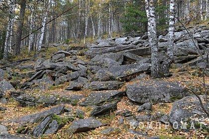 Пропавшего на Урале охотника нашли мертвым