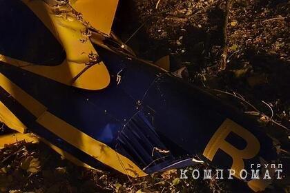 Стали известны подробности крушения вертолета Robinson R44 в Подмосковье
